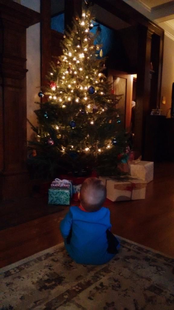 Beren and Cmas Tree